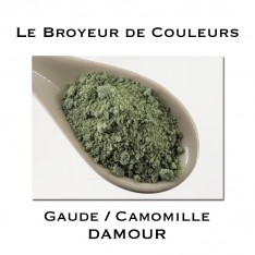 Pigment DAMOUR - Gaude + Camomille