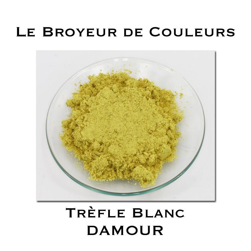 Pigment DAMOUR - Trèfle Blanc