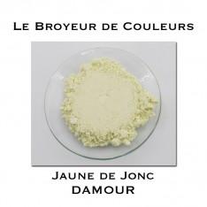 Pigment DAMOUR - Jaune de Jonc