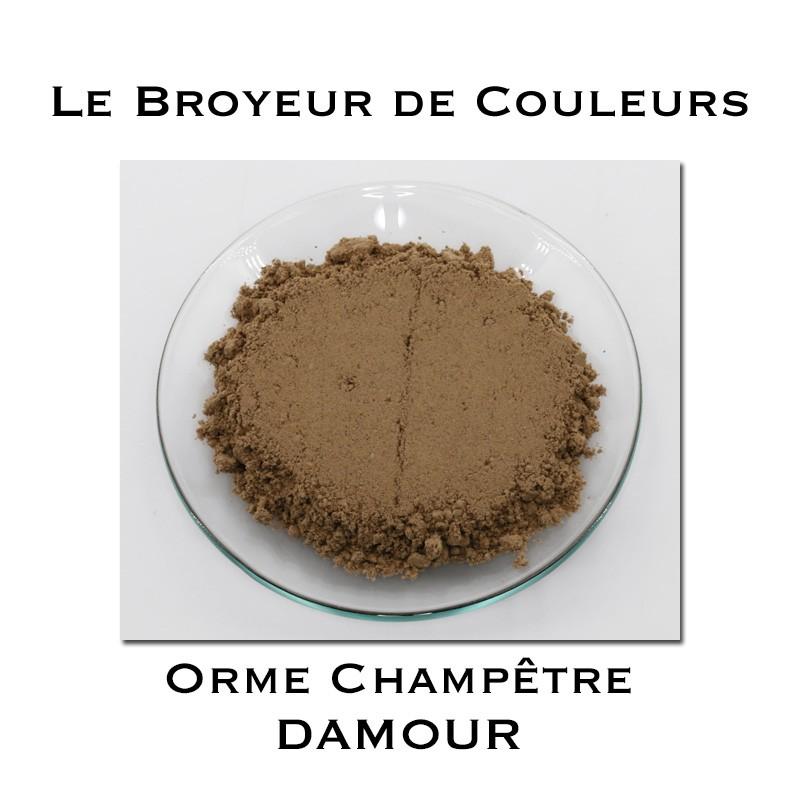 Pigment DAMOUR - Orme Champêtre