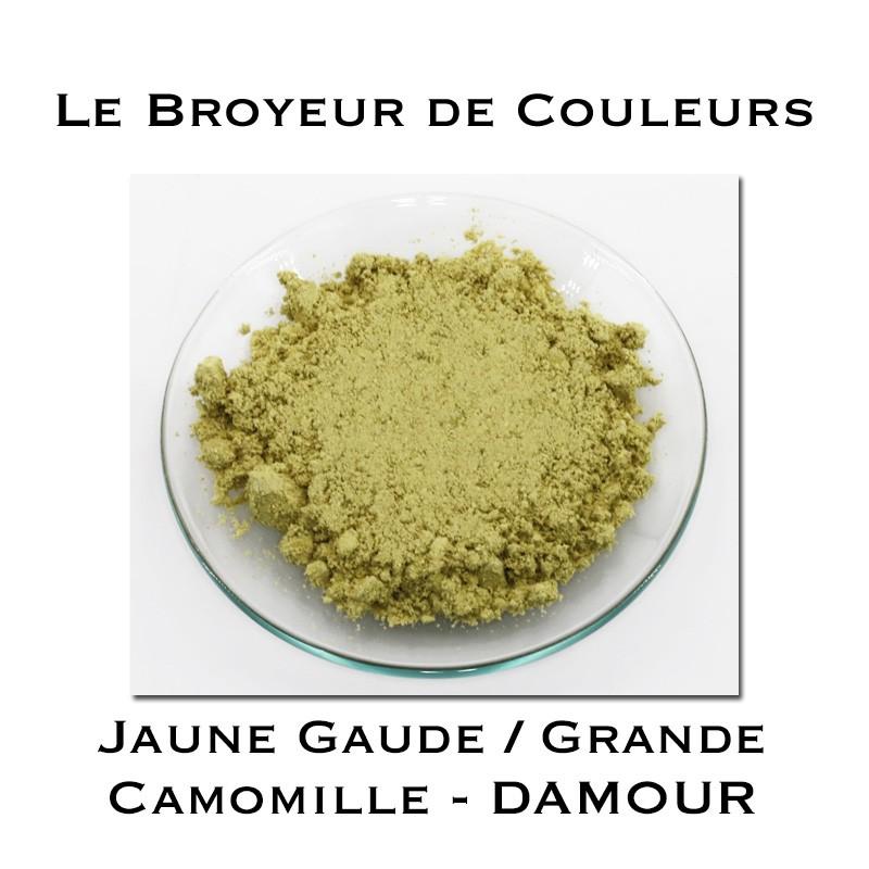 Pigment DAMOUR - Jaune Gaude/Grande Camomille