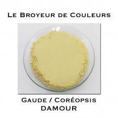 Pigment DAMOUR - Gaude + Coréopsis