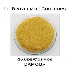 Pigment DAMOUR - Gaude + Cosmos